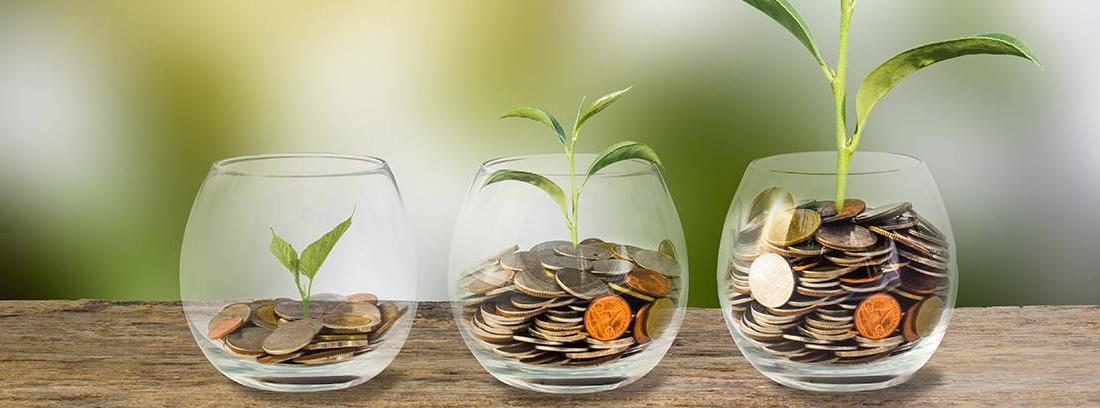 Principales productos de ahorro