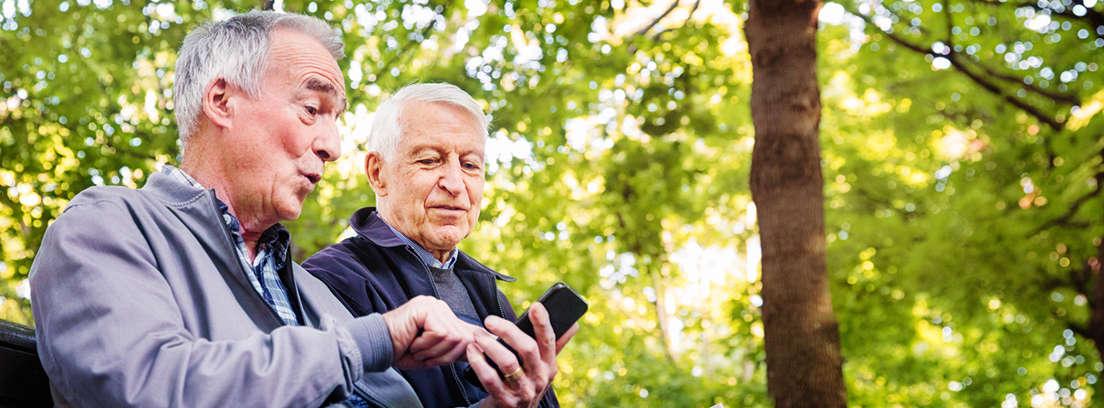 ¿En base a qué se calcula la subida anual de las pensiones?