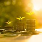 Diferencias entre valores de renta variable y renta fija