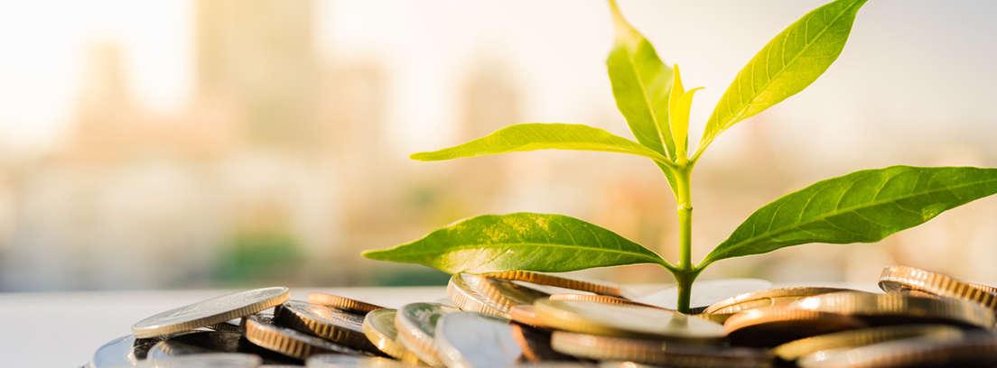 5 ideas de inversión tras vender un piso