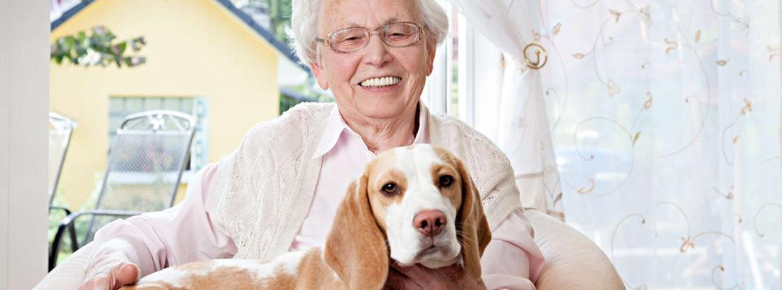 Hombre de edad avanzada con perro en brazos