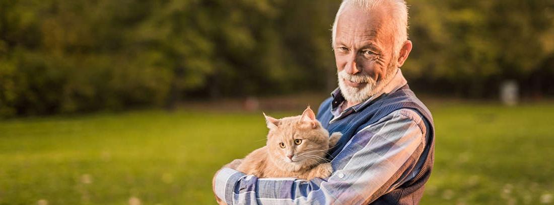 Hombre mayor sentado en un parque con gato sobre sus piernas y tocando un perro