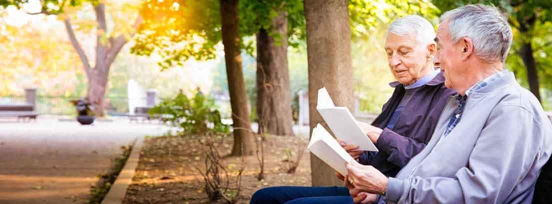 Hombres mayores leyendo libros en el parque
