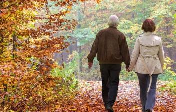 Hombre y mujer mayores andando entre hojas amarillas y árboles