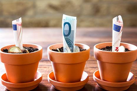 Tres macetas de barro con tierra y monedas de billetes de euro entre su tierra