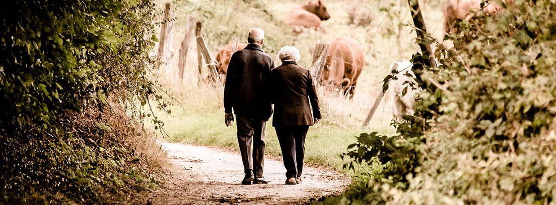 Hombre y mujer de espaldas con pelo blanco andando entre árboles