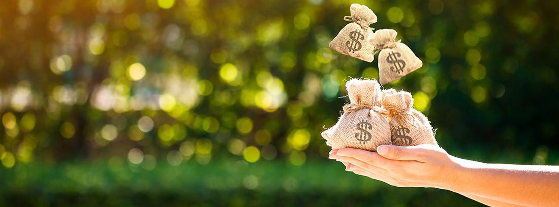 Manos recogiendo sacos con el símbolo del dólar que caen del cielo