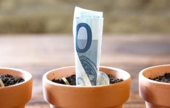 Tres macetas con tierra de las que salen billetes y monedas, como metáfora de las pensiones en Europa