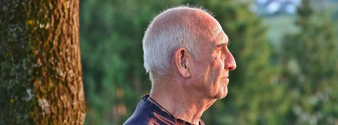 Hombre con pelo blanco y junto a un árbol