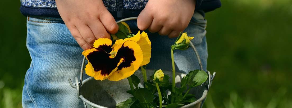 Niño llevando un caldero con flores amarillas