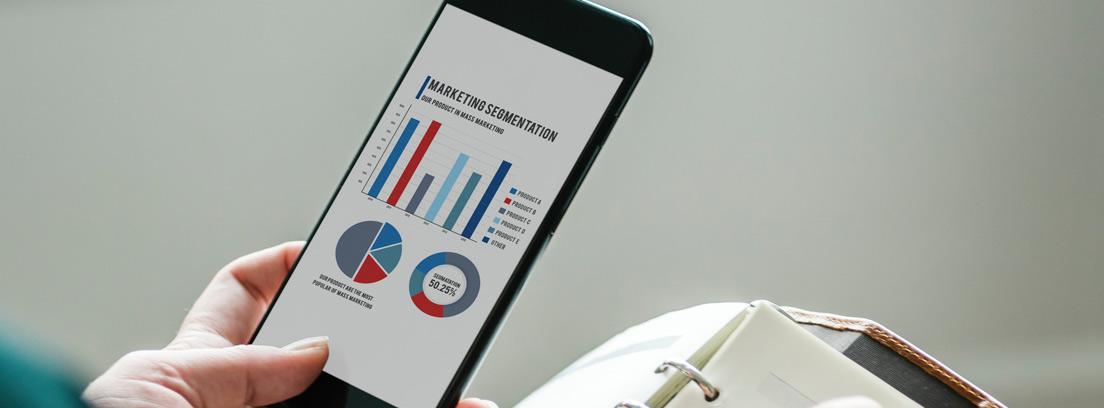 Persona con móvil con gráficos contables anotando en agenda
