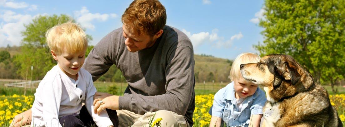 Hombre, dos niños y un perro sentados en un campo lleno de flores amarillas