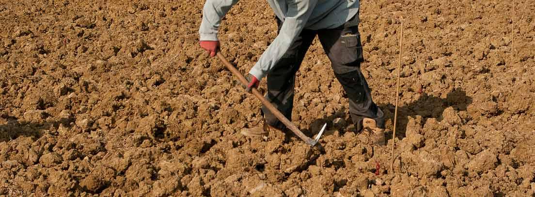 Hombre arando una tierra