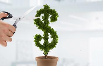 Mano de hombre con tijeras cortando una planta con forma de dólar