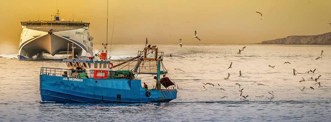 Barco de pesca seguido por gaviotas