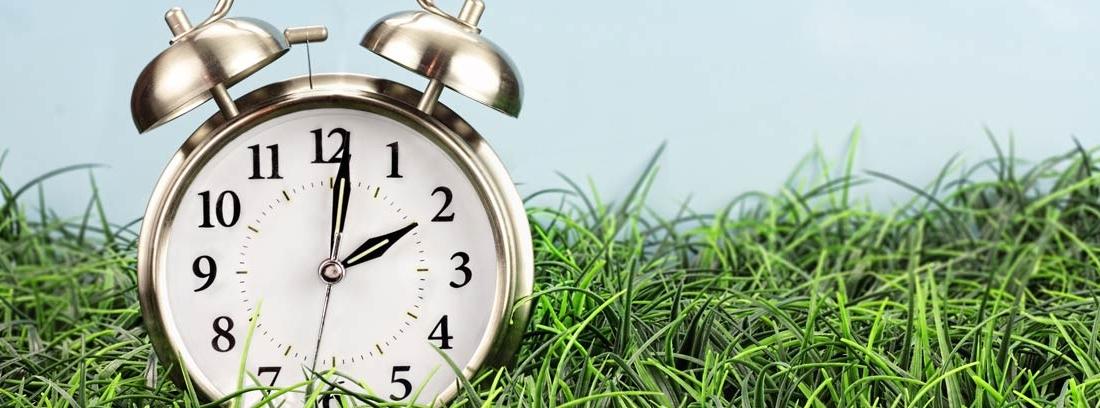 Reloj despertador sobre hierba