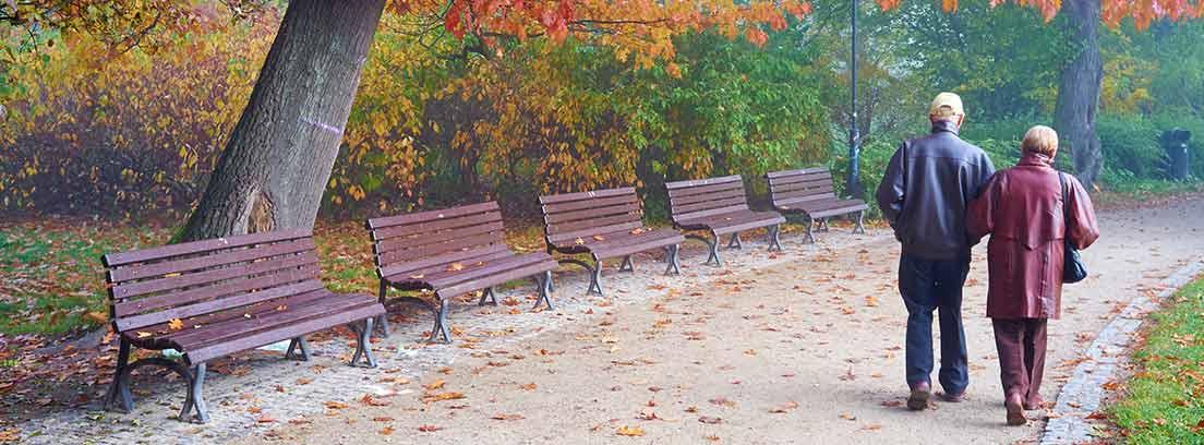 Dos ancianos de espaldas paseando por un parque