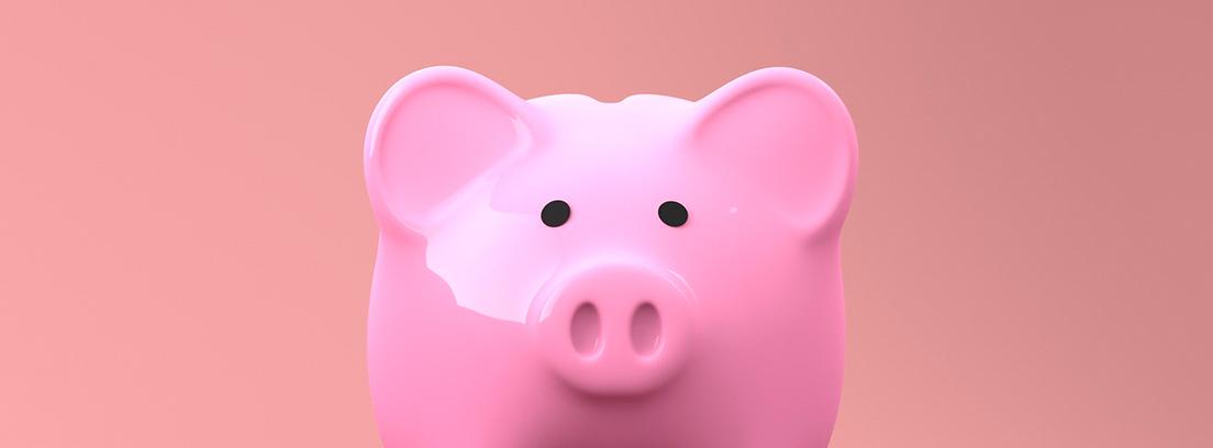 Hucha de cerdo vista de frente