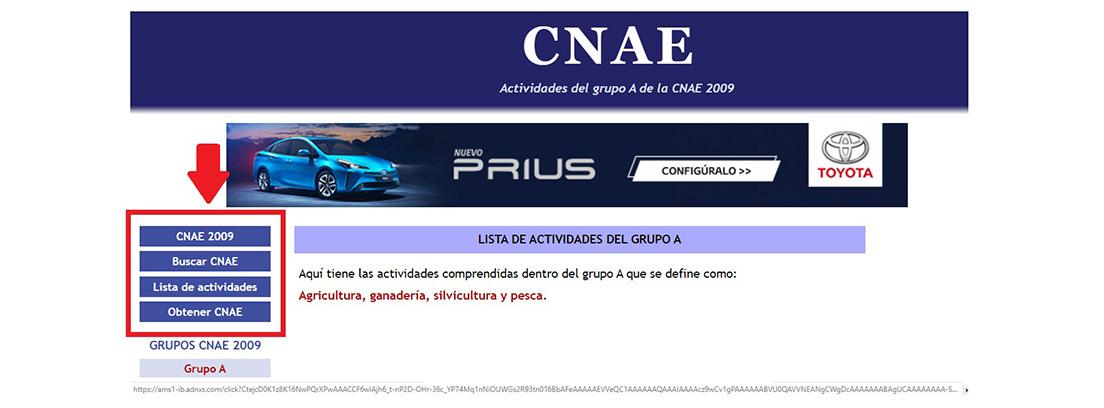Pantallazo de la web del CNAE