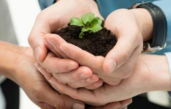 Varias personas juntando las manos para sostener un poco de tierra con una planta